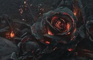 burning roses feat (1)