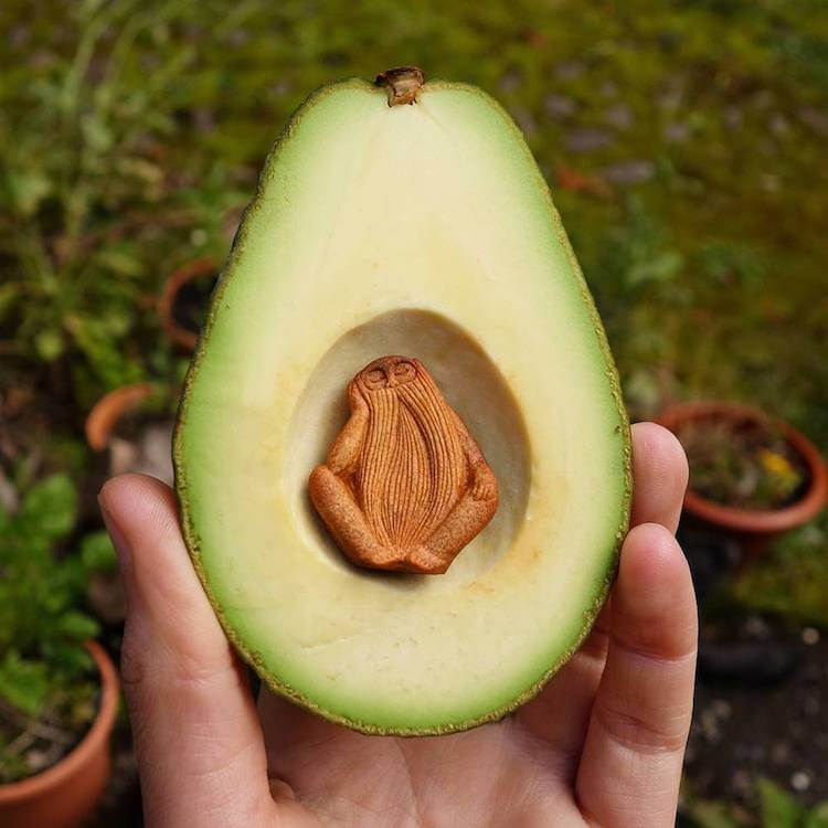 campbell avocado pit art (1)