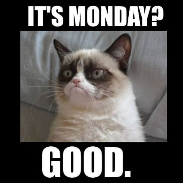 Funny Monday Meme : Monday meme pictures to try and make your weekend longer