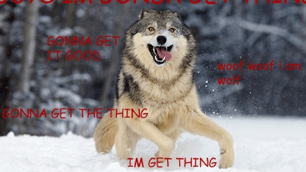 moon moon the retarded wolf feat (1)