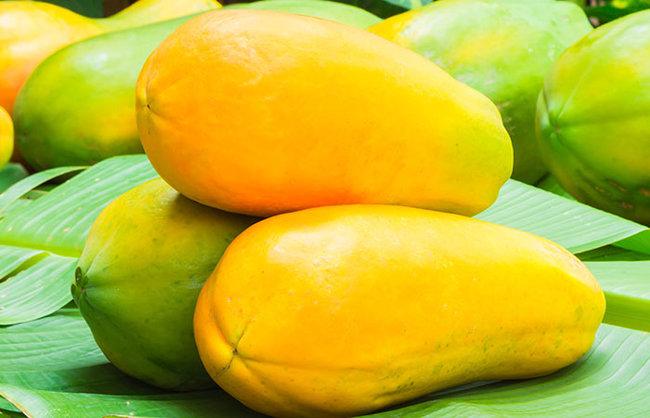 rsz_papaya-–-a-brief