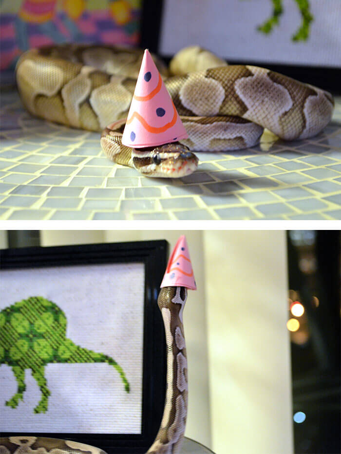 snakes in hats 12 (1)