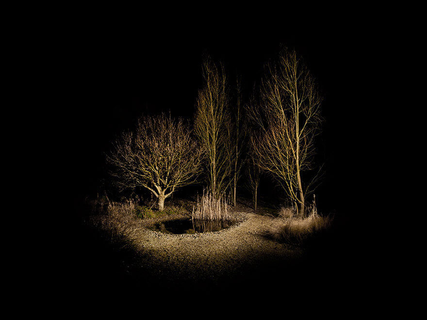 surreal wood photos ellie davies 16 (1)