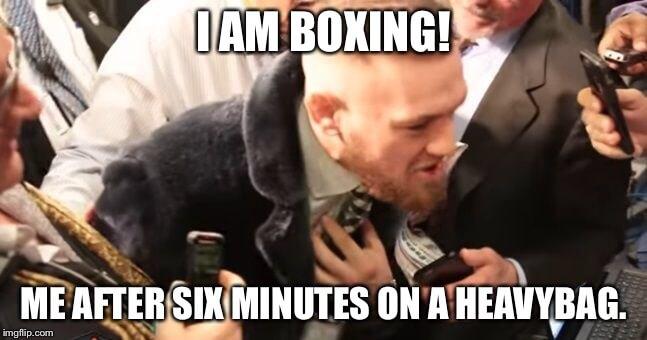 Floyed Mayweather Conor McGregor memes 8 (1)