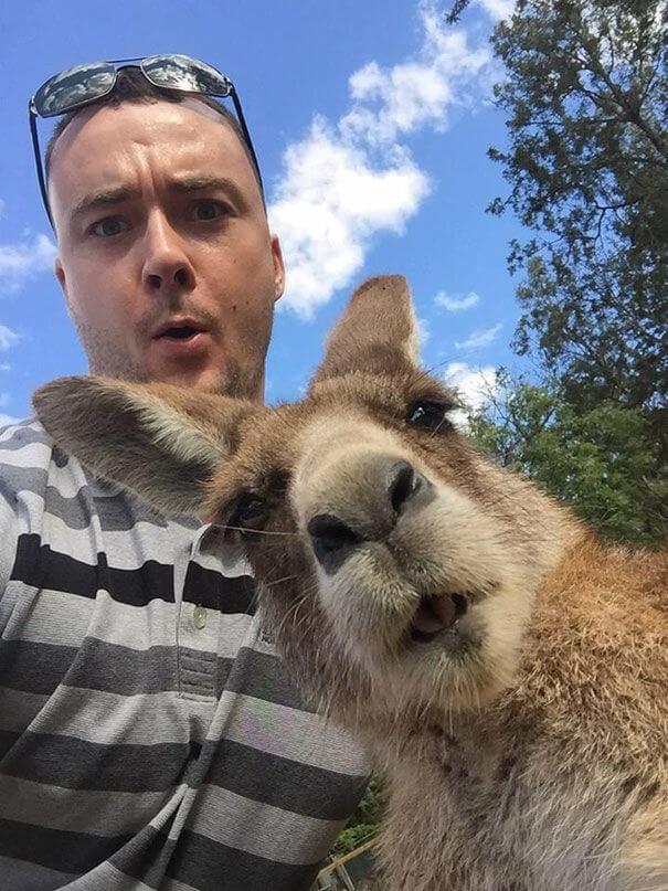 wild selfies 17