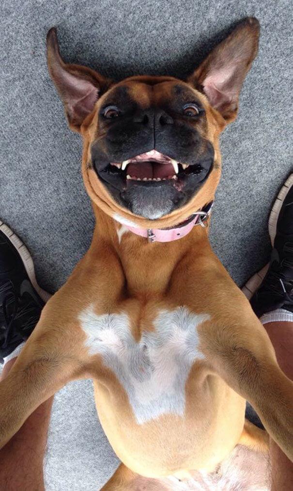 wild selfies 18