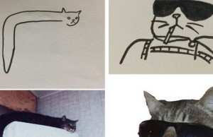cat drawing feat (1)