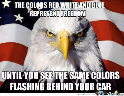 freedom pics 4 (1)