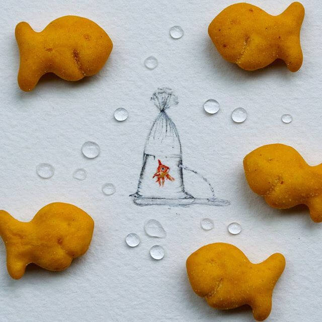 goldfish (1)