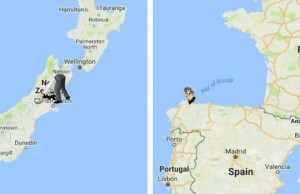 interactive antipodes map feat (1)