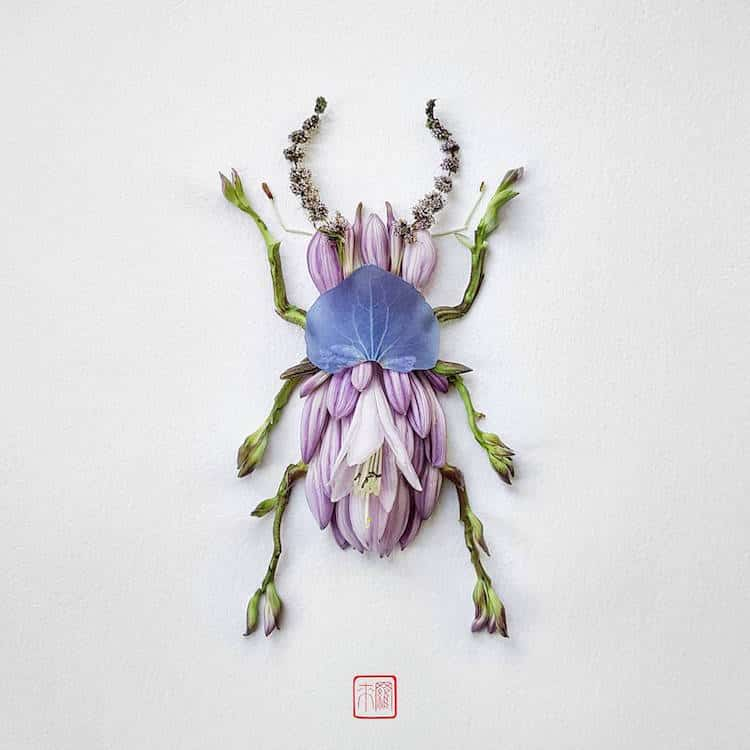 raku inoue insects from flowers (1)