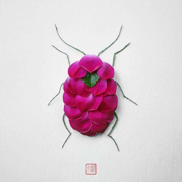 raku inoue insects from flowers 2 (1)