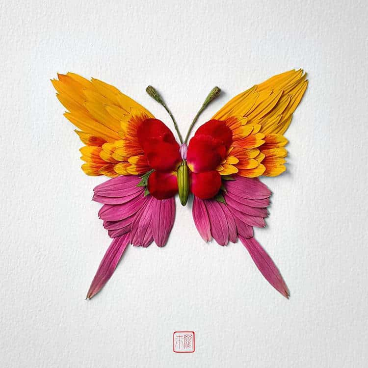 raku inoue insects from flowers 4 (1)