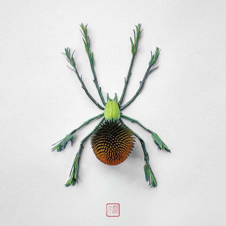 raku inoue insects from flowers 8 (1)
