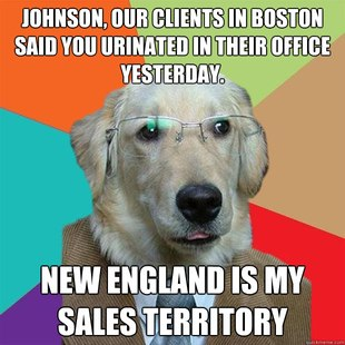 Business doggy Meme 11