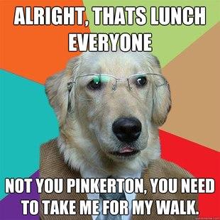 Business Dog pics 16