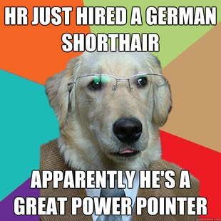 Business Dog Meme 26