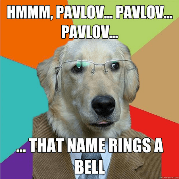 Business Dog puns 7 (1)