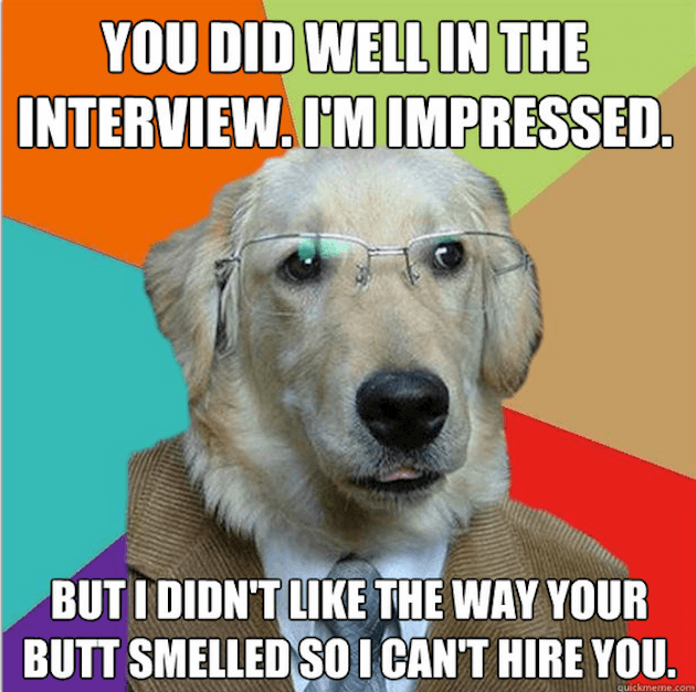 Business Dog puns 8 (1)