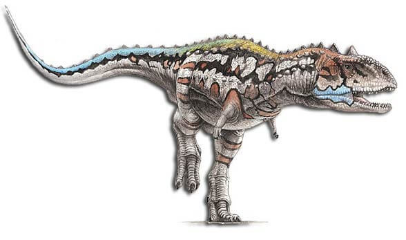 Majungasaurus facts 7 (1)