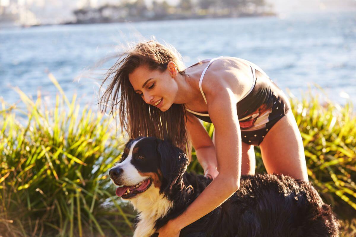 Petflair dog swimsuit 3 (1)