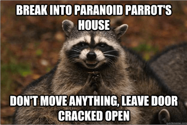 evil plotting raccoon (1)