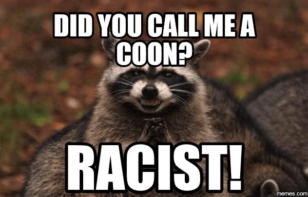 evil raccoon meme 14