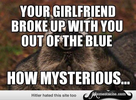 evil raccoon meme 16 (1)