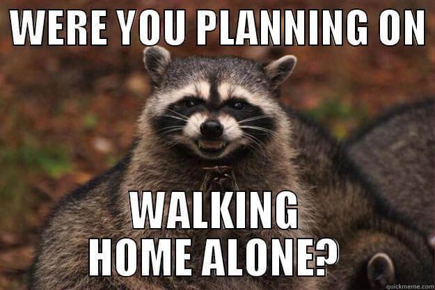 evil raccoon meme 18 (1)
