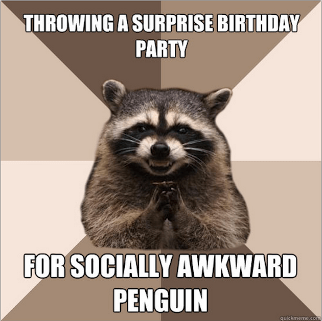 evil raccoon meme 2 (1)