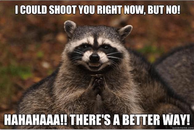 evil raccoon meme 3 (1)