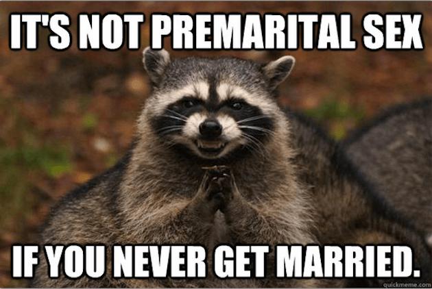 evil raccoon meme 4 (1)