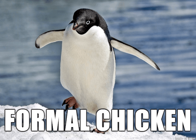 stupid animal names 14
