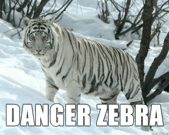 funny animal nicknames 4