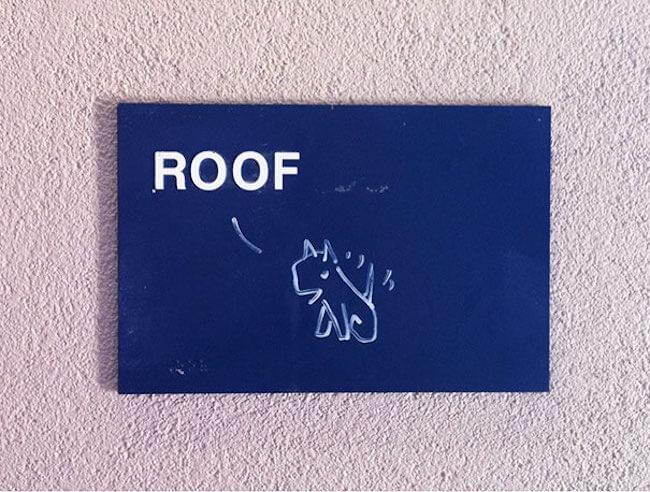 funny vandalism 61