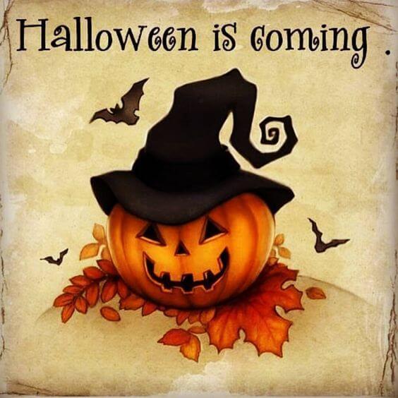 halloween pics 13 (1)