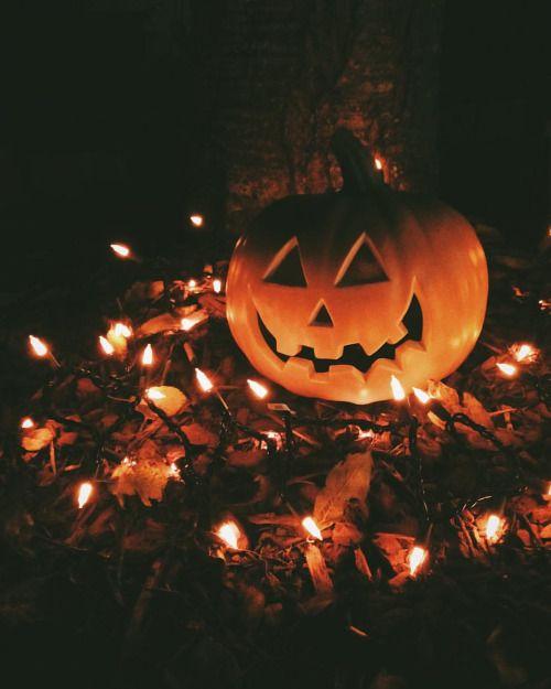 halloween pictures 2 (1)
