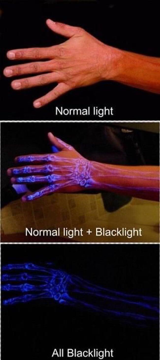 things that glow below uv light 18 (1)