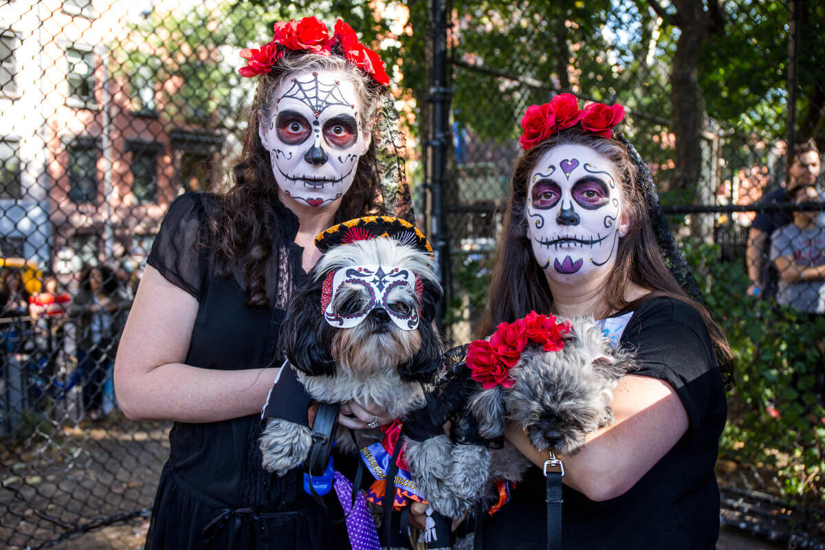 All The Dogs from 2017 Tompkins Square Halloween Parade 16 (1)