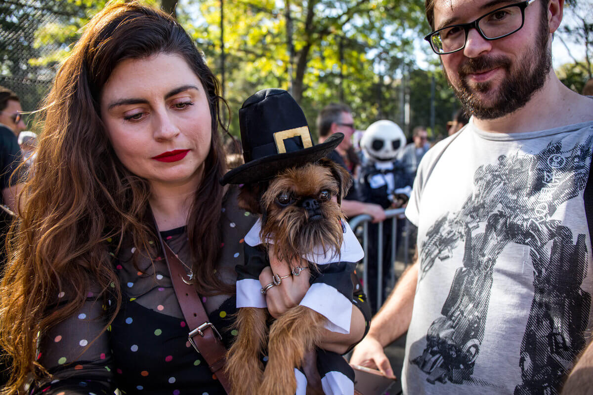 All The Dogs from 2017 Tompkins Square Halloween Parade 19 (1)