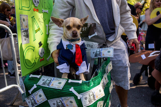 All The Dogs from 2017 Tompkins Square Halloween Parade 5 (1)