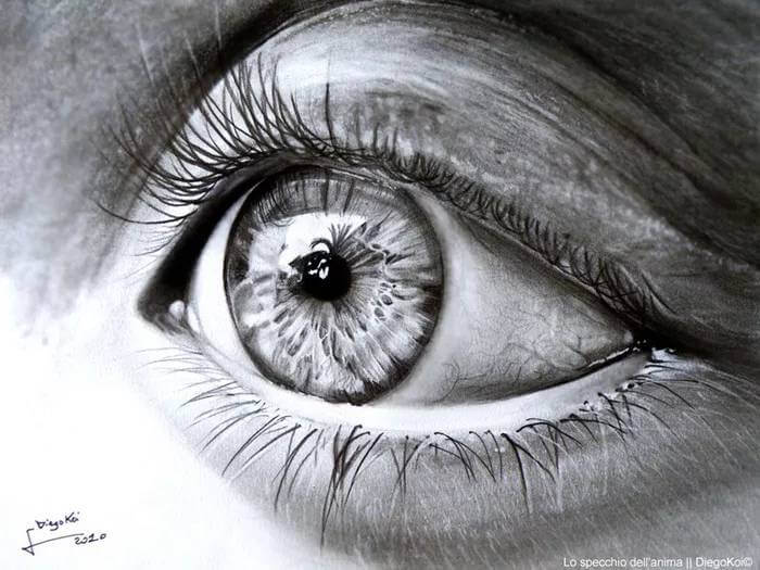 Photorealistic Pencil Drawing diego fazio 11 (1)