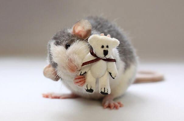Rats With Teddy Bears ellen van deelen jessica florence 15 (1)