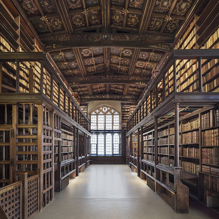 beautiful libraries 10 (1)