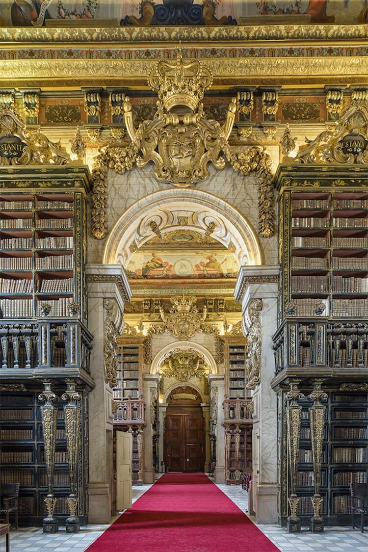 beautiful libraries 7 (1)