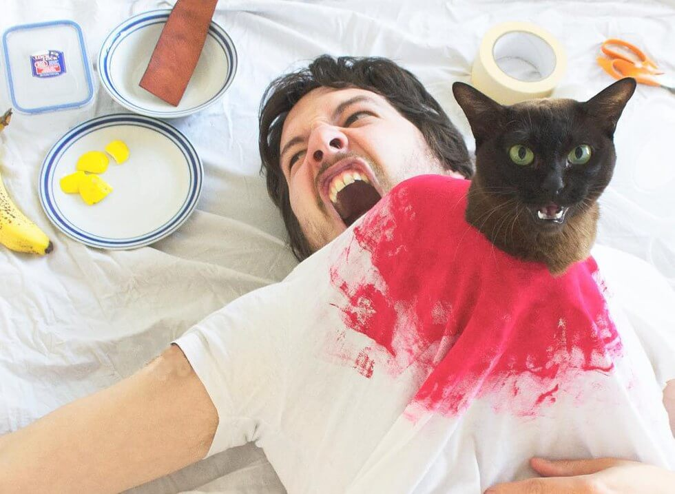 cat and human recreate famous movie scenes 10 (1)