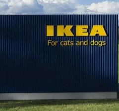 ikea pet furniture feat (1)