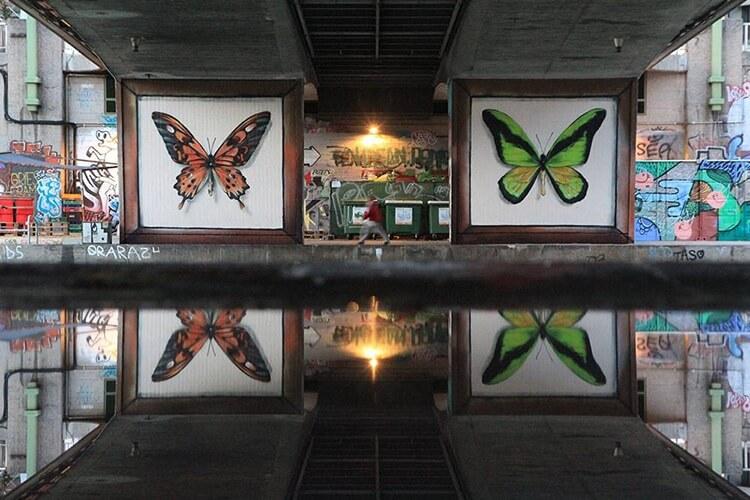 mantra butterfly murals 10