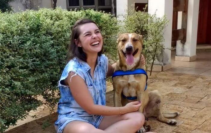 matheus marillia pieroni stray dog crash wedding 10 (1)