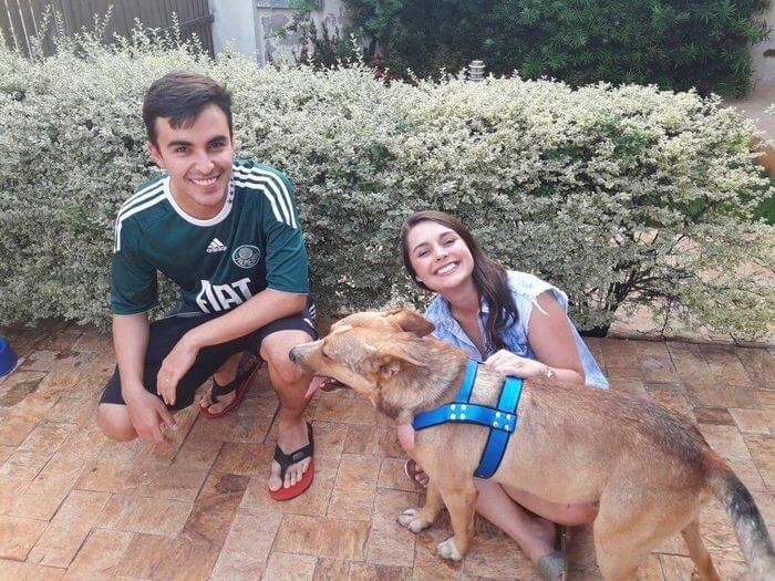 matheus marillia pieroni stray dog crash wedding 9 (1)